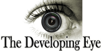 The Developing Eye