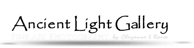 Ancient Light Gallery
