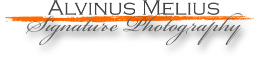 alvinusmelius.com