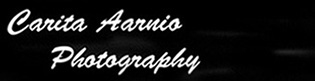 Carita Aarnio
