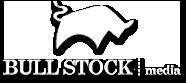 Bull Stock Media