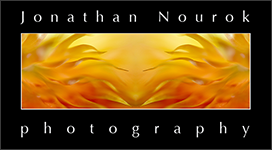 Jonathan Nourok Photography