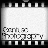 Gentuso Photography