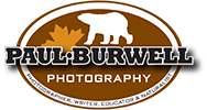 Paul Burwell Photography