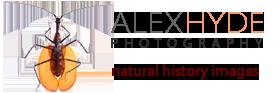 Alex Hyde