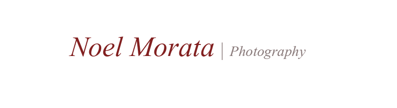 Noel Morata Photography