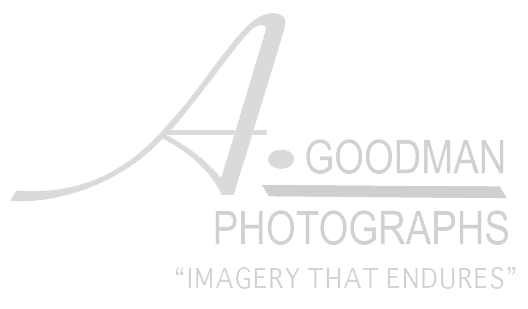 Albert Goodman-Imagery that Endures-   Dallas, TX
