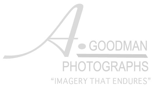 A. Goodman-Imagery that Endures-Dallas, TX