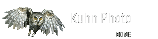 Kuhn Photo
