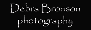 Debra Bronson photography