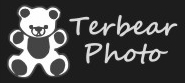 Terbear Photo