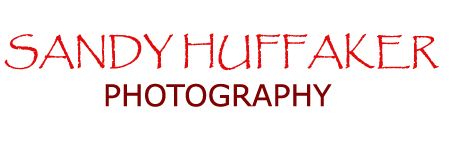 Sandy Huffaker Photography