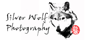 Silverwolf Photography