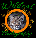 WildcatPhotography