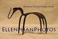 EllenphanPhotos