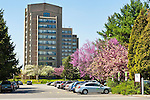 Hofstra University campus General Parking lot, with ZIPCAR parking, cherry blossoms, and dorm buildings, on April 19, 2012, in Hempstead, New York, USA.