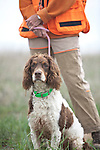 The English Springer Spaniel Shopping cart has 3 Tabs:<br />