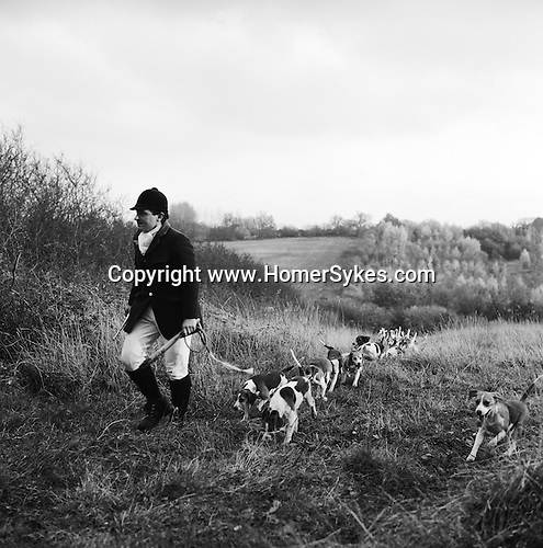 The Dummer Beagles..The Dummer hunt with permission of the Master of the Fox Hounds Association. Their country takes in the Heythrope, Warwick and the Cotswold foxhunting country. Manor Farm, Icomb, Gloucestershire. Hunting with Hounds / Mansion Editions (isbn 0-9542233-1-4) copyright Homer Sykes. +44 (0) 20-8542-7083. < www.mansioneditions.com >.