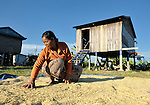 Phon Pheurn spreads out rice to dry in the sun in front of her house in the Cambodian village of Pheakdei.
