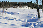 Snowshoe track through  snow covered marsh