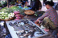 In such a tropical climate and with the lack of refridgeration the freshest foods highly desired. Even the fish are sold live and cleaned on the spot. Cambodia. Pentax Spotmatic. 2004