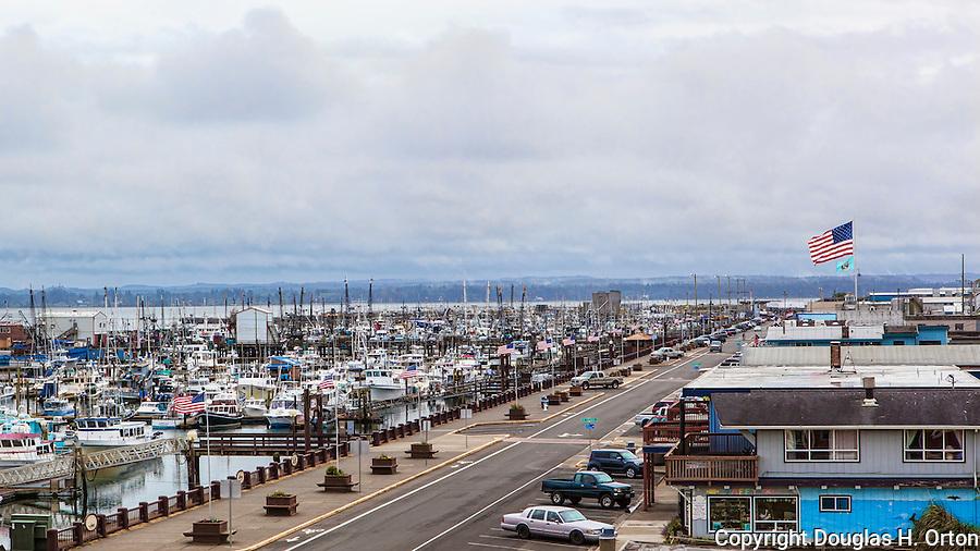 Westport charter fishing autos post for Wa fishing charters