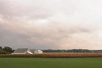 Barns &amp; Farm<br /> Riverhead, Long Island
