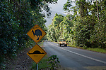 "Cape Tribulation cassowary sign vandalised to a ""roadkill"" before and after sign."