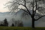 Lake and mountains Stätter See, Beckenried, Luzern area, Switzerland.