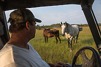 Yves Breton sits in is Arctic Cat prowler 650 H1 as he looks at his Clydesdale horses on his farm in Saint-Laurent, Manitoba, Friday August 14, 2015. The Clydesdale is a breed of draft horse derived from the farm horses of Clydesdale, Scotland, and named after that region.