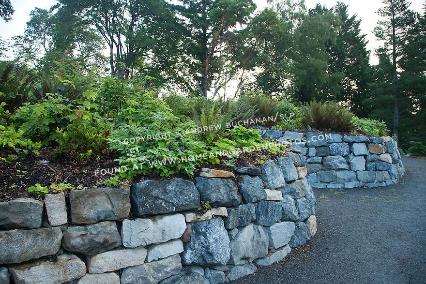 Df022286 Garden Seattle Arboretum Stock