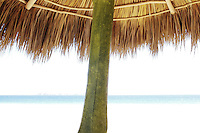 a palapa in La Sirena restaurant at La Perula beach 20 mins from Careyes. A good place for casual, cheap, fresh seafood