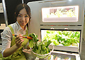 May 30, 2012, Tokyo, Japan - A model offers fresh leaves of lettuce grown under LED lights on a bio farm in a smart agriculture project jointly developed by Panasonic and University of Chia during the Smart Grid Exhibition 2012 in Tokyo on Wednesday, May 30, 2012. (Photo by Natsuki Sakai/AFLO) AYF -mis-