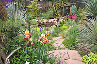Bearded iris, yuccas, and other textured plants frame the walk to the lower pond in Dan Johnson's Denver garden.