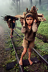 00544_05. Bangladesh, 1983. BANGLADESH-10014. Two young boys carry wood. <br />