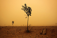 Farmland engulfed by a sandstorm near the city of Zhongwei, in Ningxia Province. Increasing desertification in the region has resulted in more sandstorms which continue to plague this region, especially in the spring months.