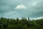A Rainbow is seen from the bus while driving through Northern Ireland on Saturday, June 22nd 2013. (Photo by Brian Garfinkel)
