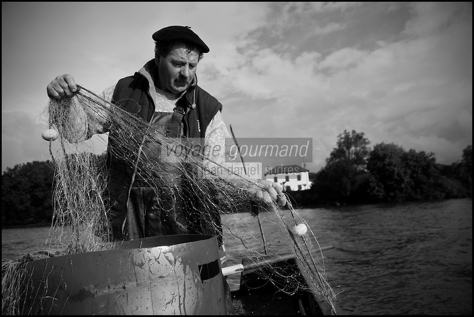 Europe/France/Aquitaine/40/Landes/Env de Sainte-Marie-de-Gosse: A la p&ecirc;che avec Christian Betbeder, agriculteur et p&ecirc;cheur professionnel sur l'Adour - En plus de ses vaches et kiwis il p&ecirc;che depuis 35 ans le saumon et l'alose sur l'Adour // France, Landes, ste Marie de Gosse, A fishing with Christian Betbeder farmer and commercial fisherman on the Adour, in addition to his cows and kiwis there for 35 years fishing for salmon and shad on Adour <br /> AUTO N: A12-3007