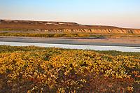 Sagavanirktok river and the Franklin Bluffs on the arctic coastal plains, arctic, Alaska.