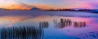 Colorful morning sunrise over Willow lake and the Wrangell mountains, Wrangell St. Elias National Park, Alaska.