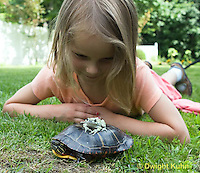 1R24-500z  Child looking at Painted Turtle with Gray Treefrog [Hyla versicolor] on turtle's back, Chrysemys picta, PRA