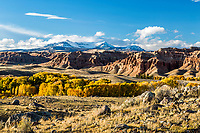 A beautiful autumn day south of Dubois Wyoming. Yellow cottonwoods line the Wind River and the feeder creeks and the Absaroka Mountains tower over the Dubois Badlands - what a place.