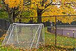 Fall foliage at Memorial Park in East Boston, Massachusetts, USA