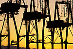 Port of Seattle at sunset with large cranes silhouetted Seattle waterfront Seattle Washington State USA