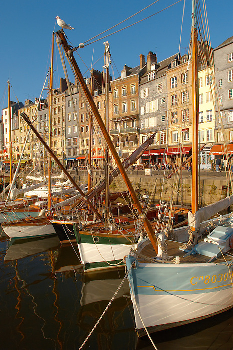 old sail  Fishing boats -  Honfleur harbour, Normandy, France.