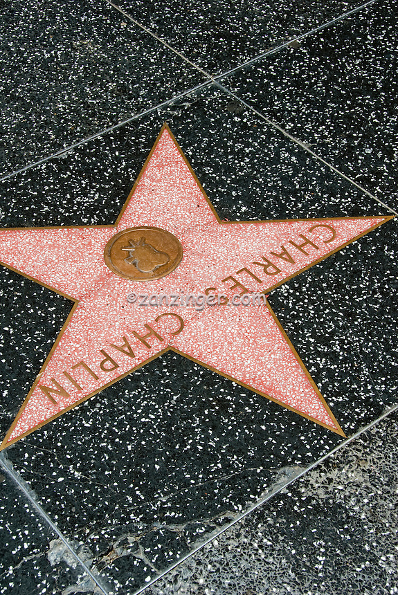 Hollywood Walk of Fame, Celebrity Stars, Sidewalk,  celebrity's, highlight, Walk of Stars
