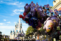 Walt Disney World Resort's Magic Kingdom.
