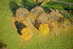 Aerial view of fall color