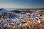 Sandy Neck Conservation Area in Barnstable, Cape Cod, MA, USA