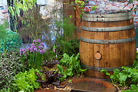 Rainbarrel and Herb Garden & Vegetables